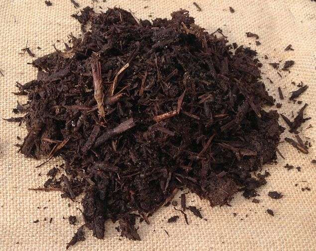 Mushroom Compost Mulch